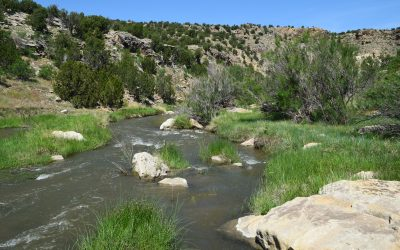 Cucharas Canyon Ranch – Adjoins BLM!