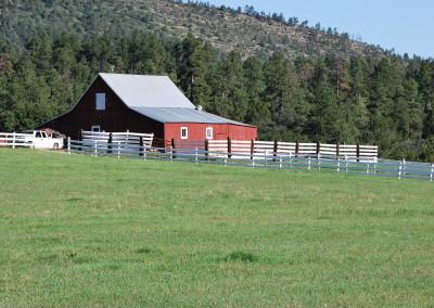 Wild Turkey Ranch 016