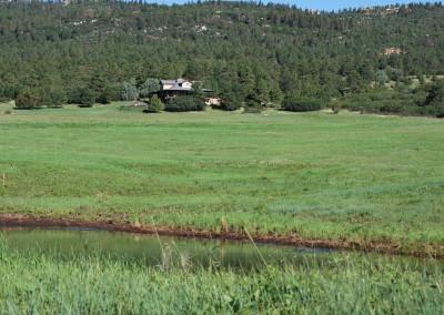 Wild Turkey Ranch 033