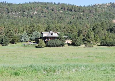 Wild Turkey Ranch 037