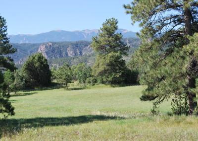 Wild Turkey Ranch 122