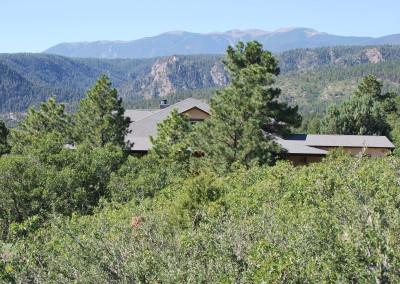 Wild Turkey Ranch 129