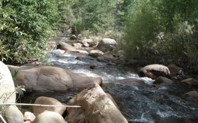 Four Mile Creek & Canyon Land – Trout Stream!