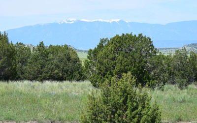 Colorado Ranch Adjoining State Lands