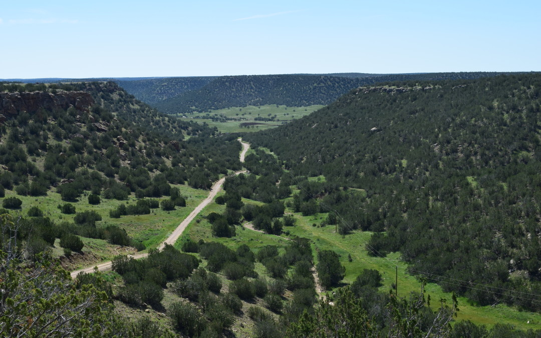 Barber Ranch – Canyon Land and Big Game!