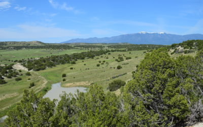 Meadowbrook Ranch – $670 Per Acre!