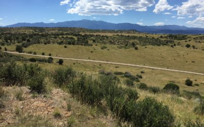 Meadowbrook Ranch – Only $610 Per Acre!