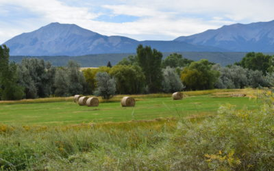 Cucharas River Ranch – Irrigated Pasture, Water Rights!