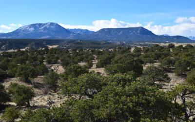 Mountain Vista Recreational Land