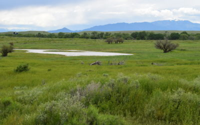 River's Edge Ranch – Spectacular Views!