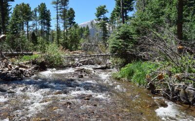 North Brush Creek Preserve – High Country Hideaway!