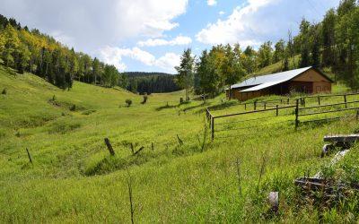 Bugling Elk Ranch