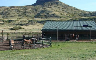 Wild Horse Rock Ranch